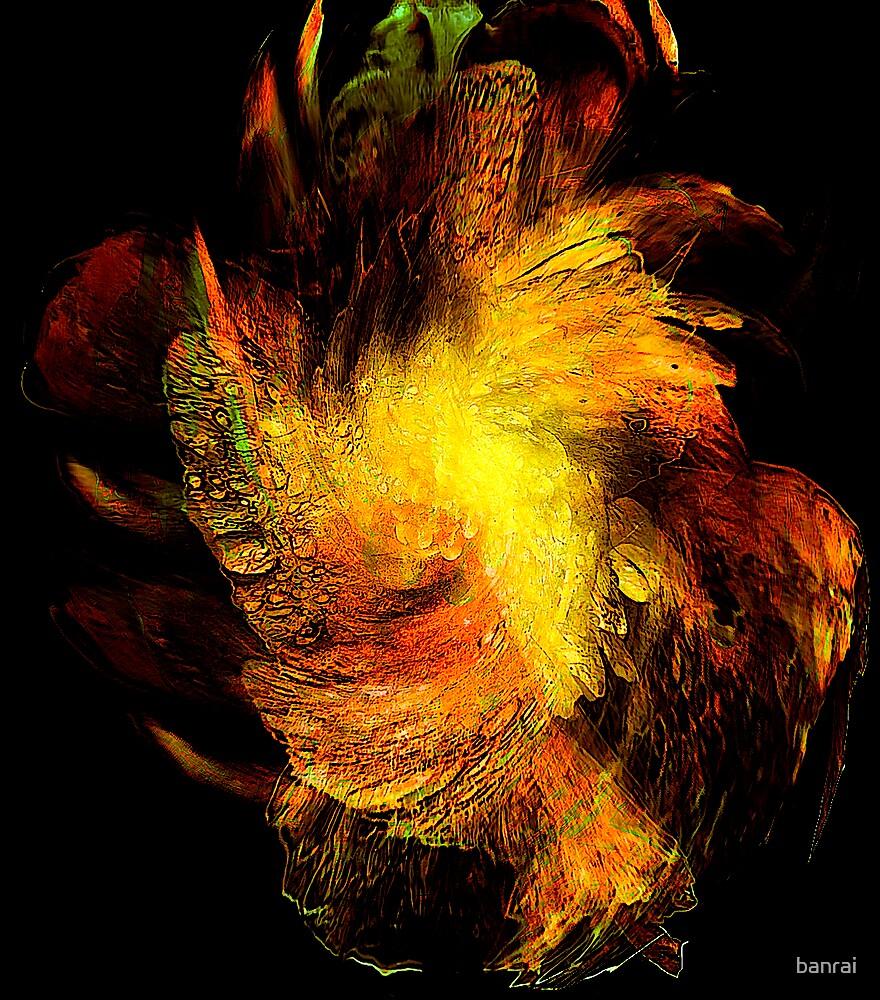 man of Iris...old age by banrai