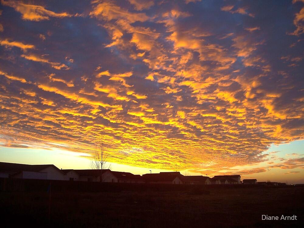 Crisp Sunset by Diane Arndt