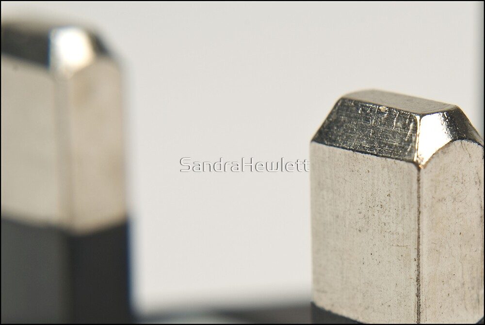 Life is in the details 5 by SandraHewlett