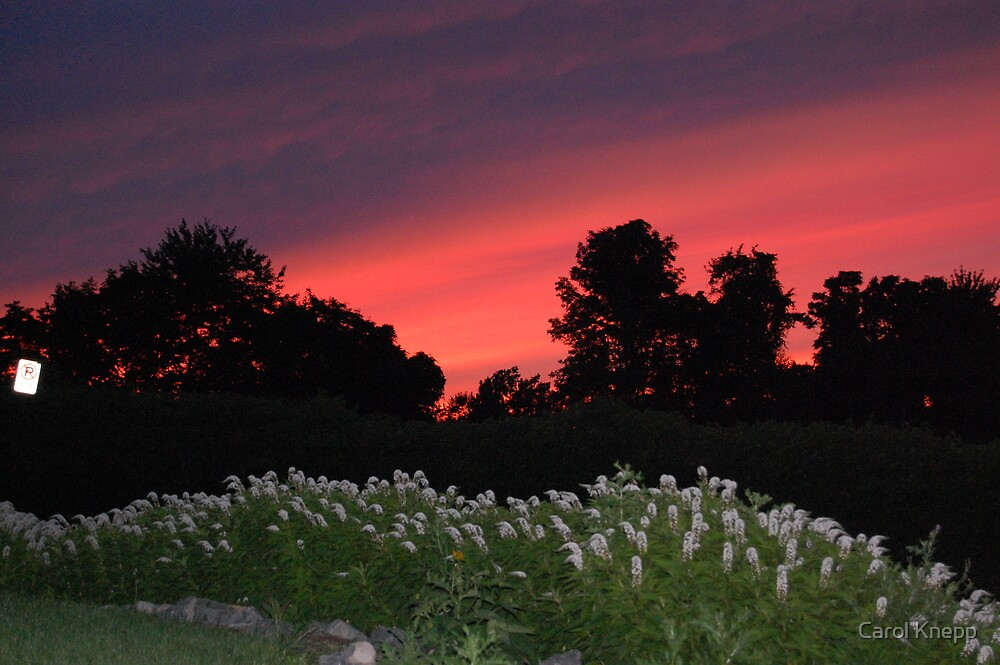 Another beautiful sunset by Carol Knepp