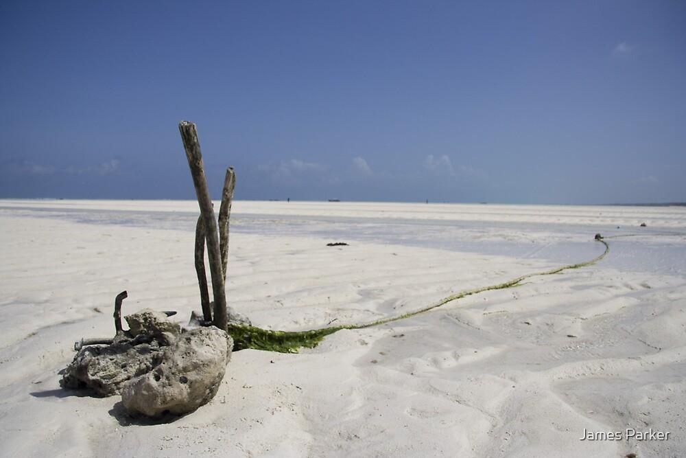 Zanzibar Beach  by James Parker