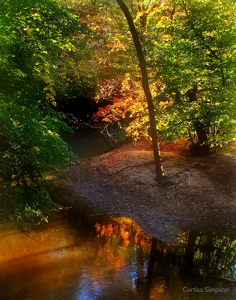 Color My Morning As Autumn by Curtiss Simpson