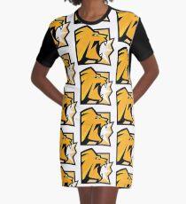 RB6 Siege Lion Icon - Fan Art  Graphic T-Shirt Dress