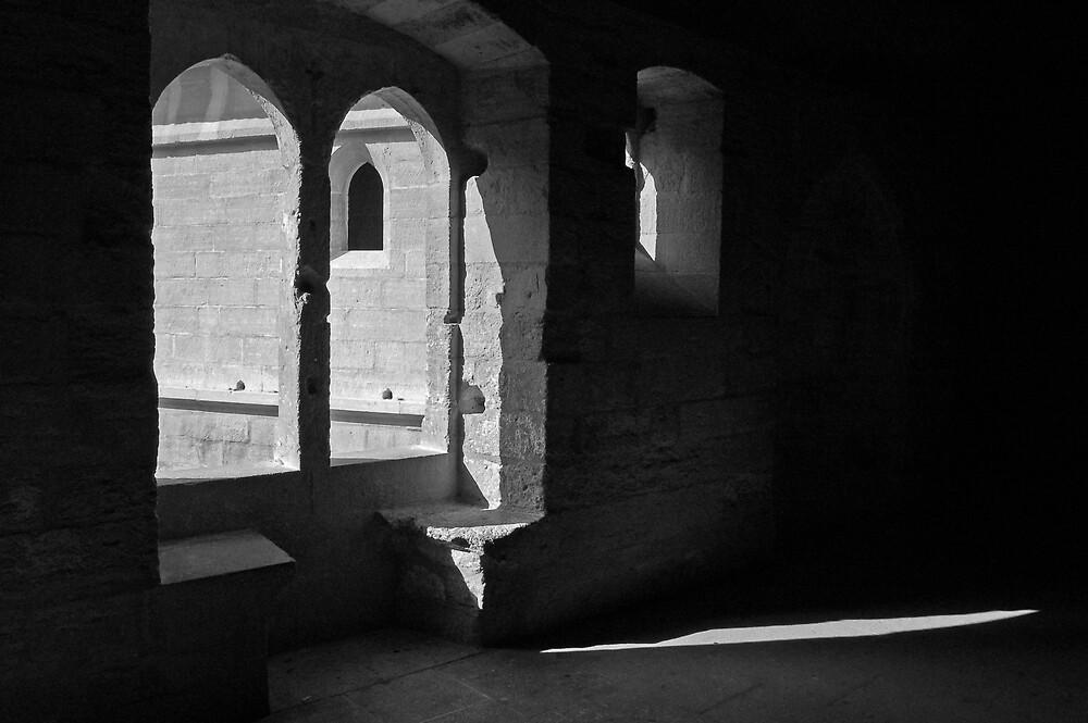 Palais du Papes, Avignon by Matt Rudge