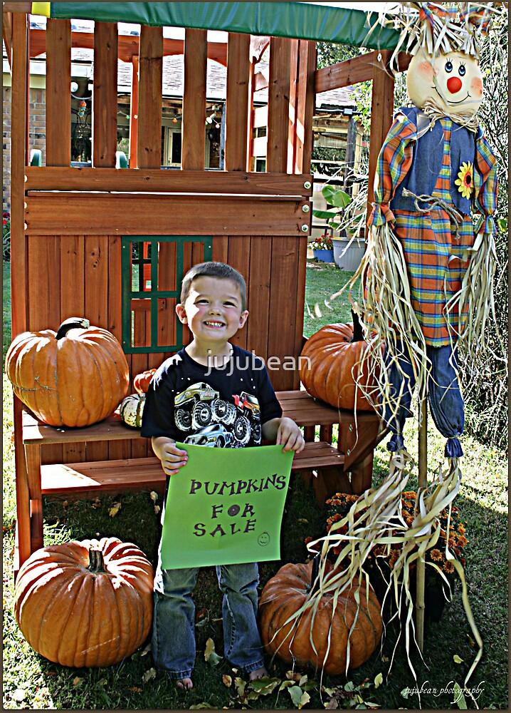 Pumpkins for Sale by jujubean