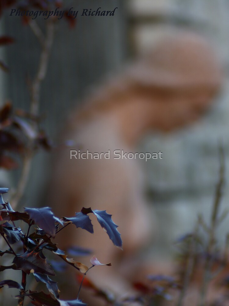Lady of the Park by Richard Skoropat