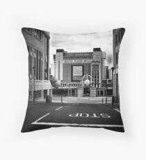 Stop, look and Read? Throw Pillow