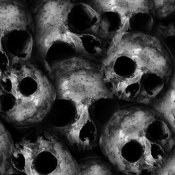 Skulls by Harou