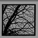 Silberner grauer Baum von Amanda Irene