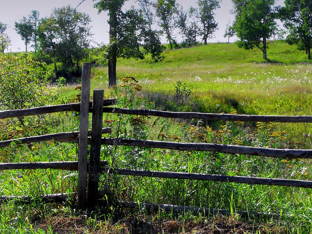 Countryside Fence by TracyL72
