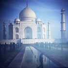 Plastic Taj by Lisa Bow