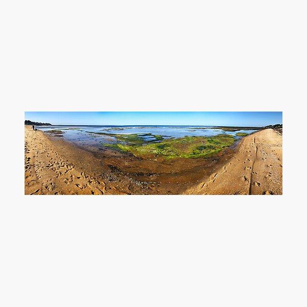 Rickett's Point Panorama Photographic Print