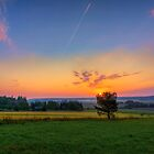 September Morning by Veikko  Suikkanen