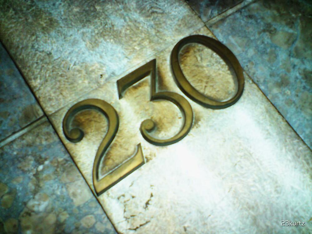 230 by 23kurtz
