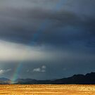 The End of the Rainbow by Pamela Inverarity