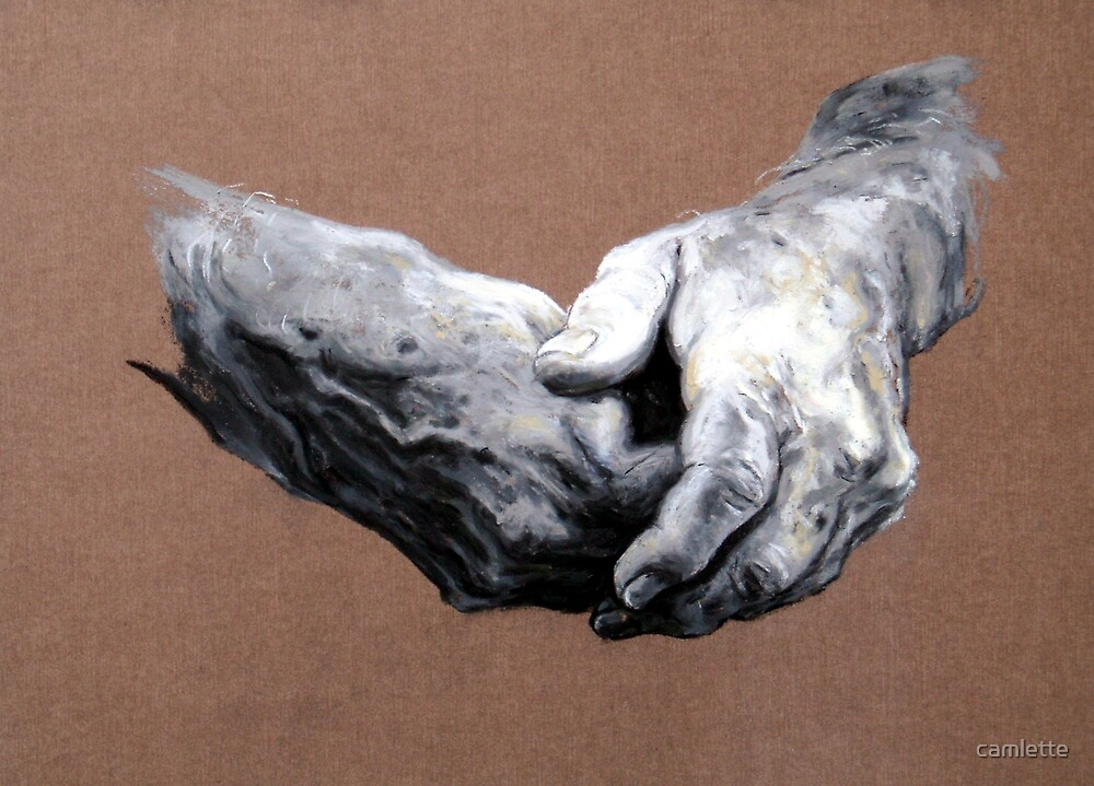 Hands Study by Cameron Hampton