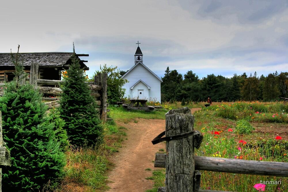 Mockingbird Hill Pioneer Farm by tanmari