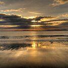 Auckland Sunrise  by Zak Bacon