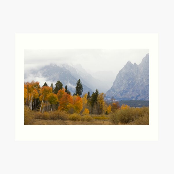 Cascade Canyon, Snow Showers & Fall Color Art Print