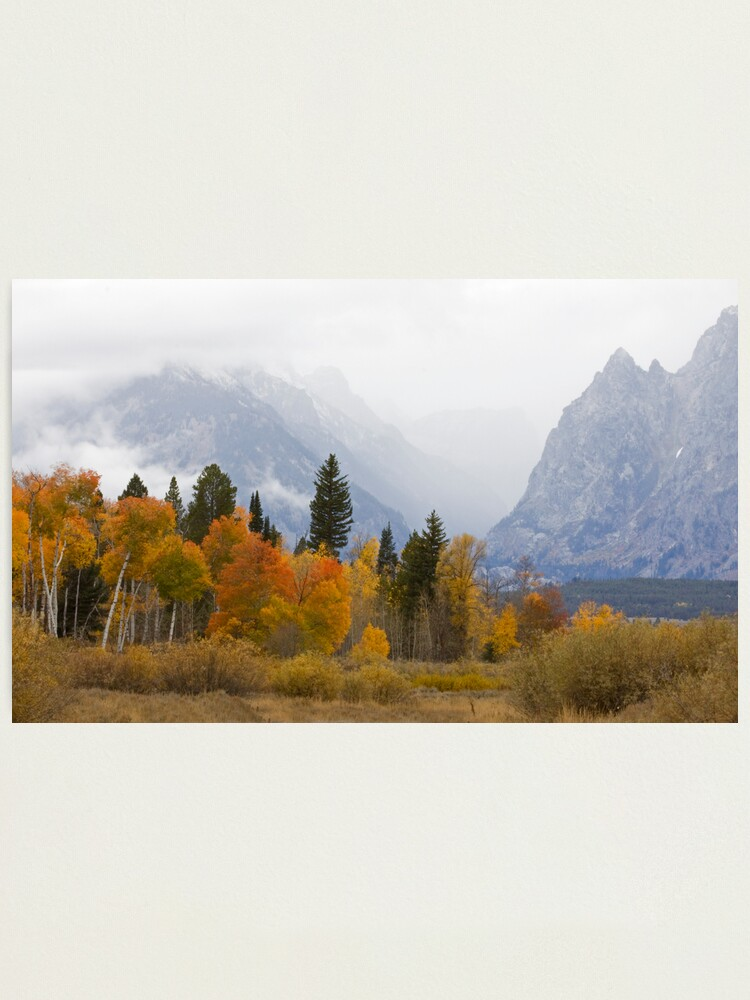 Alternate view of Cascade Canyon, Snow Showers & Fall Color Photographic Print