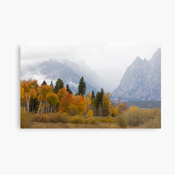 Cascade Canyon, Snow Showers & Fall Color Metal Print