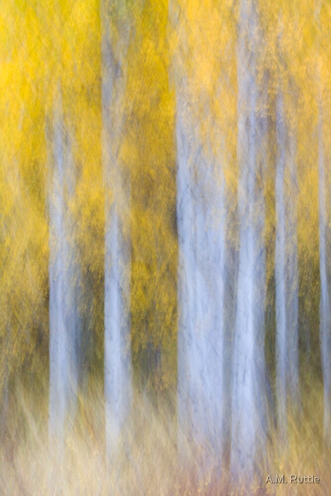 Aspen Abstraction by A.M. Ruttle