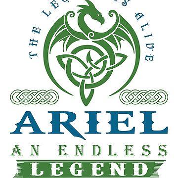 Legend T-shirt - Legend Shirt - Legend Tee - ARIEL An Endless Legend by wantneedlove