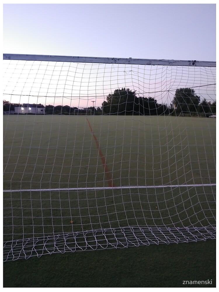 #web, #fence, #goal, #sport, #ball, #soccer, #competition, #stadium by znamenski