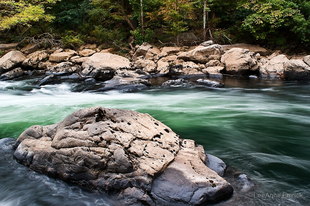 Rushing Rapids by LeeAnne Emrick
