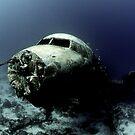 Underwater Photography by Rick Grundy