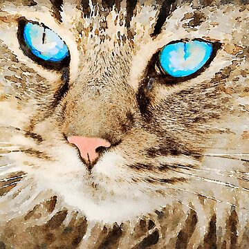 Tabby Cat with Blue Eyes by leonwoods