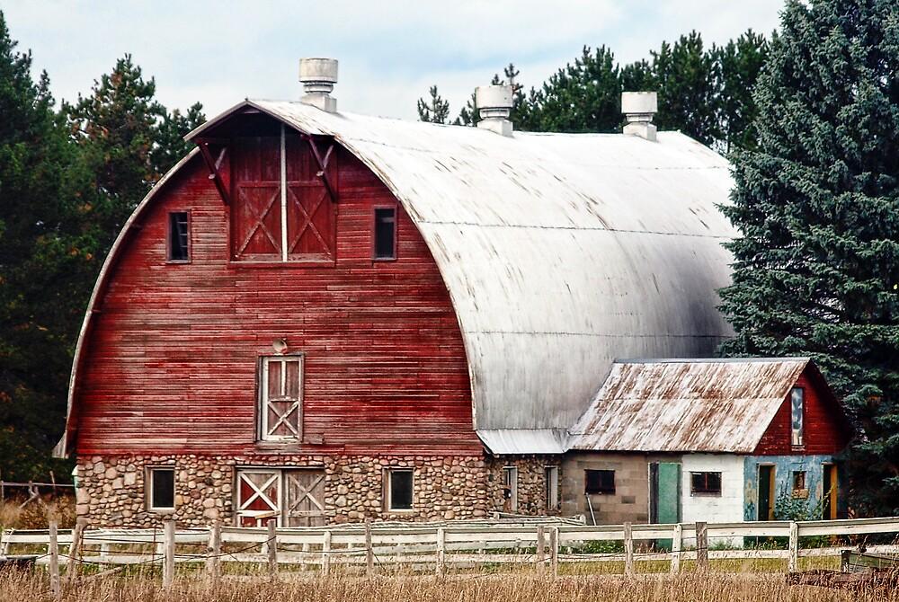 The Barn by Terry Doyle