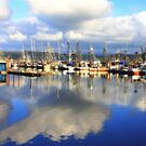 Reflections in the Harbour by aussiedi