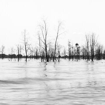 Lake Eildon by silvtom
