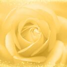 Golden Rose by hurmerinta