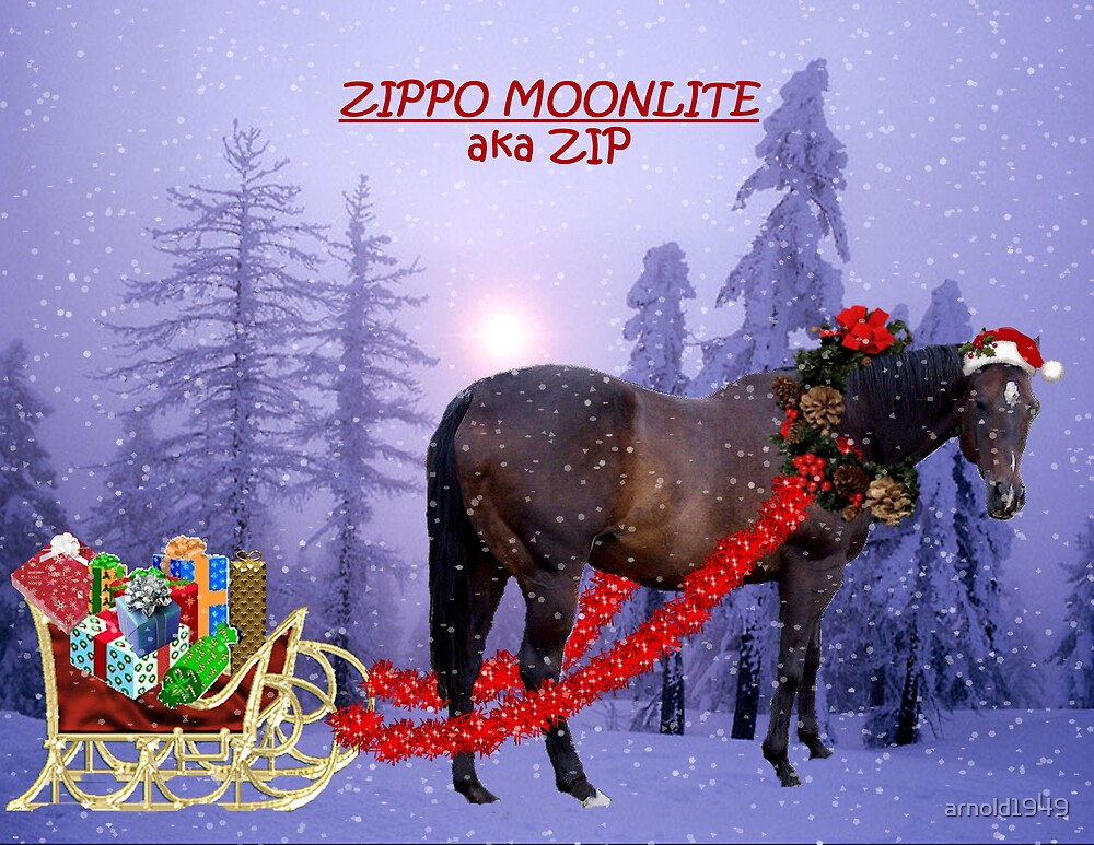 Sherriey's Calendar-December by arnold1949