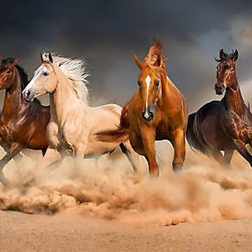 Horses Running On A Beach by Staytrendy