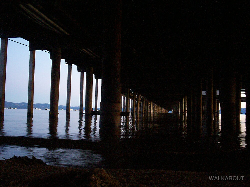 under the pier by WALKABOUT