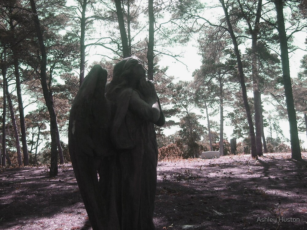Angel In Shadow by Ashley Huston