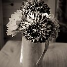Dahlias in monochrome by Kevin Allan