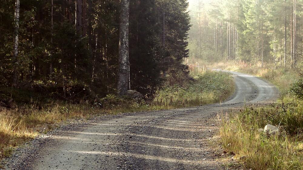 1.10.2009: Autum Road by Petri Volanen