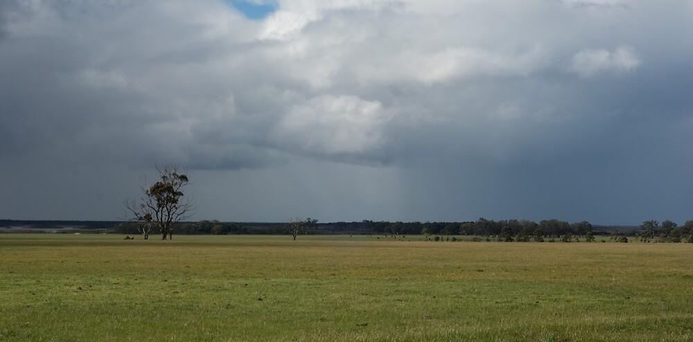Near Lochsport by Garry Roberts
