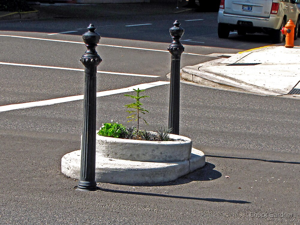 Smallest Park in the World by Chuck Gardner