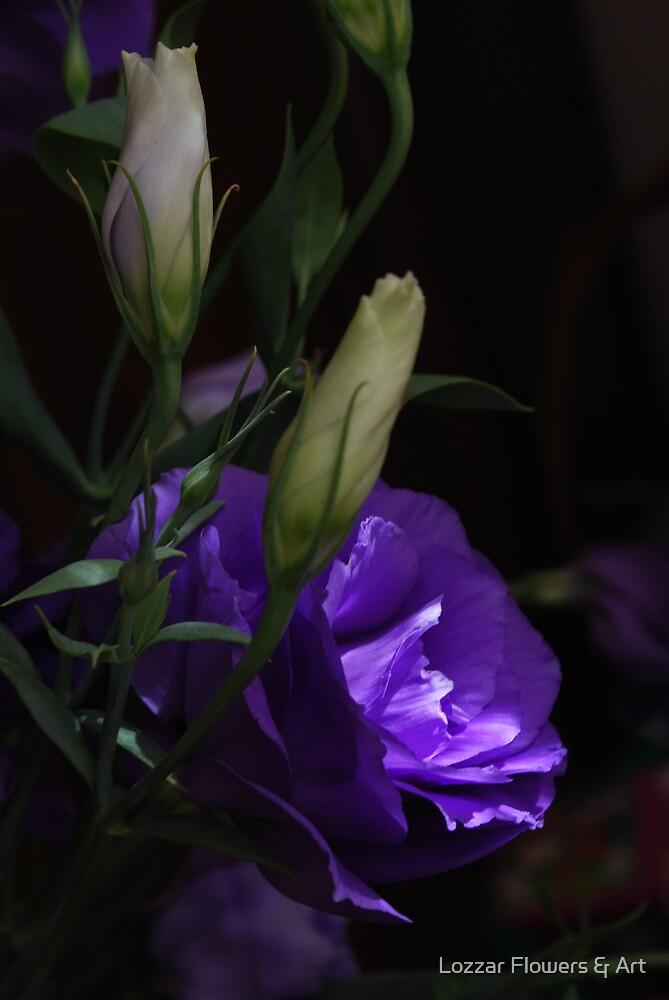 Lithianthus mystery by Lozzar Flowers & Art