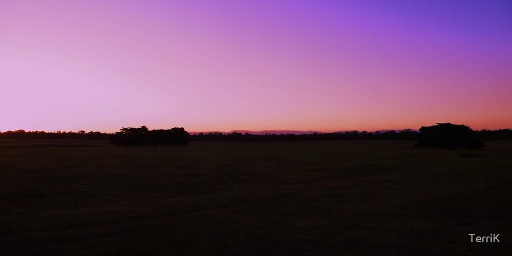 sunset by Terri  Kruithof