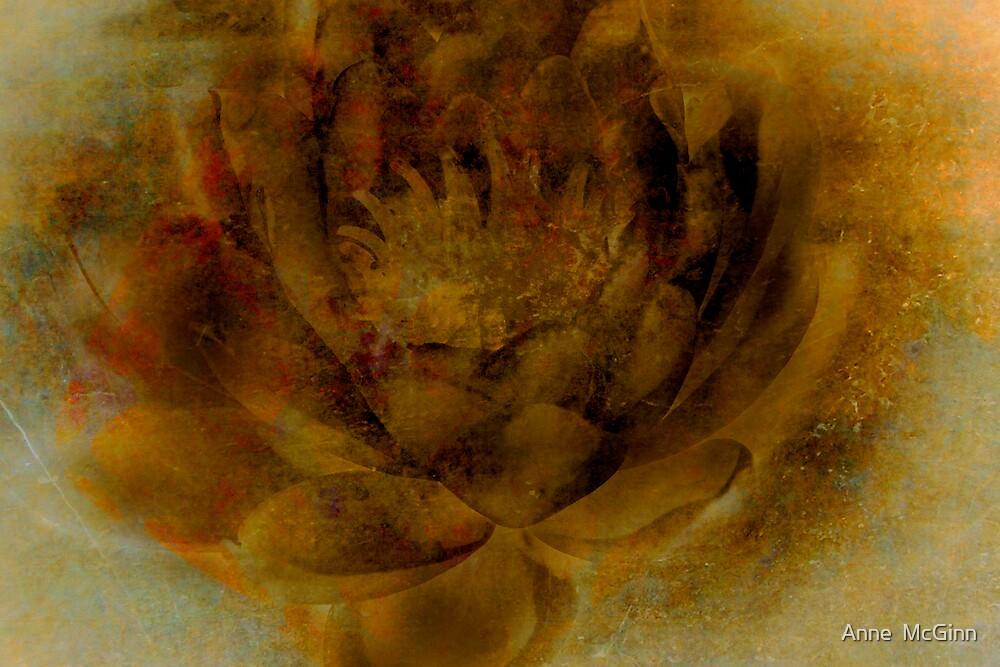 Flower Study/Gold by Anne  McGinn