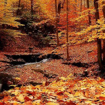 Colorful Hike by swblazer