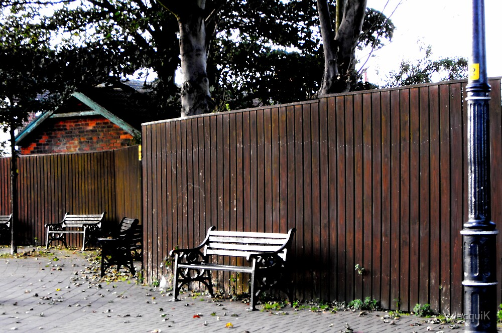 Benches and Autumn Leaves. by JacquiK