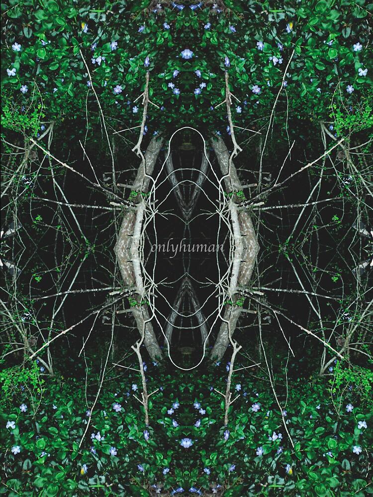 AGarden_Mirror by onlyhuman