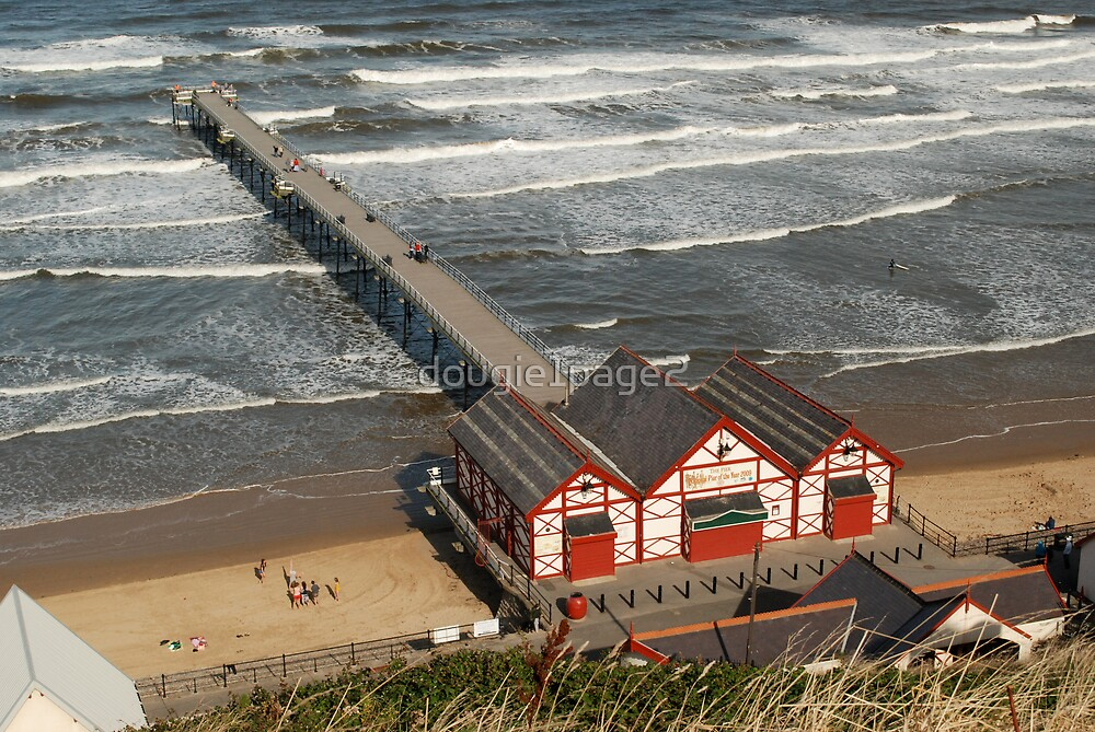 Saltburn Pier by dougie1page2